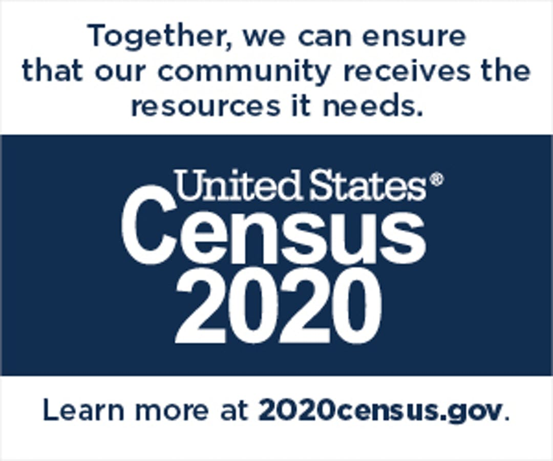 Census_Partnership_Web_Badges_1A_v1.8_12.10.2018